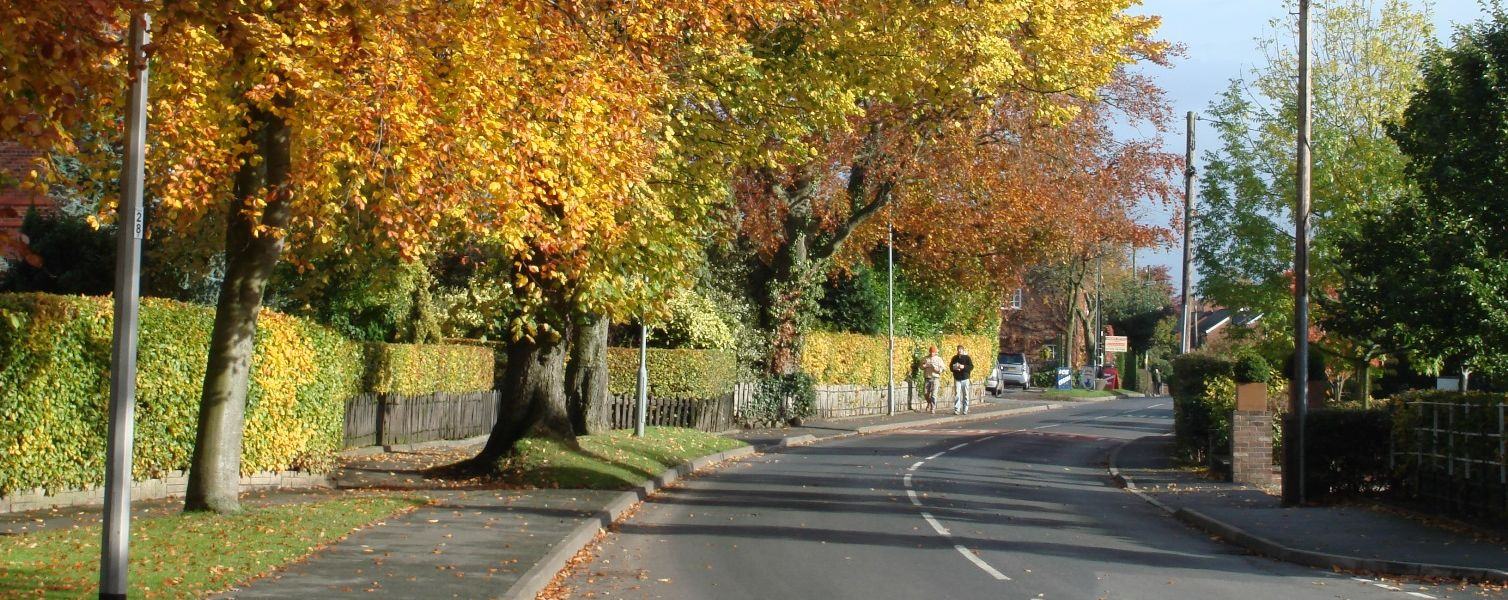 Picture of Main Road in Goostrey, including trees with autumnal leaves