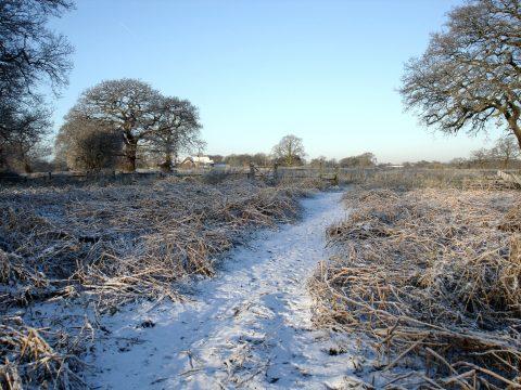 Snow scene of fields in Goostrey